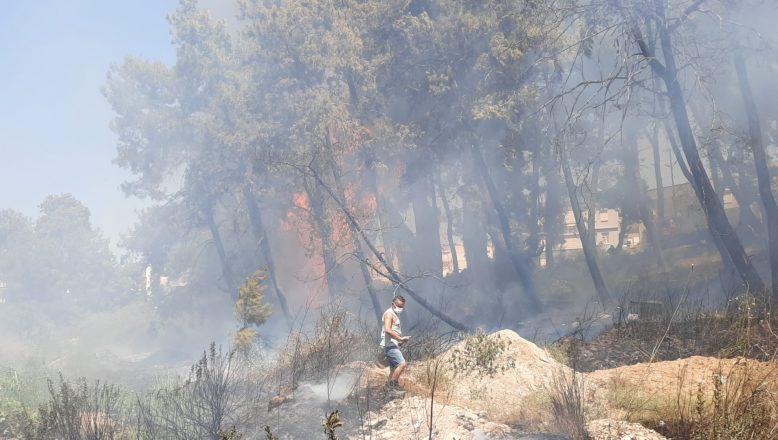 Manavgat'ta çıkan büyük orman yangını kontrol altına alınamadı